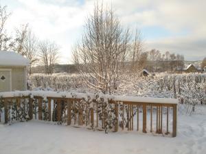 Vinter 8 dec 1
