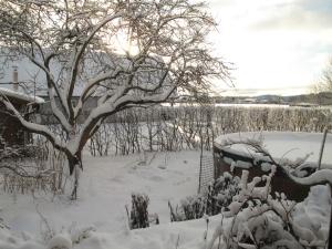 Vinter 8 dec 3