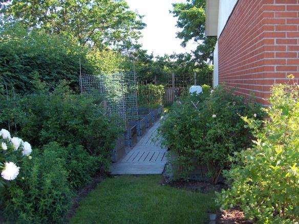 2006 juli. En smal gräsgång leder från gräsmattecirkeln in till landen.