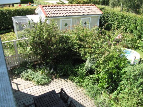 2009 augusti. Foto uppifrån ner mot trädäcket och staketspaljén.
