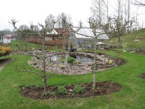 trädgård 6