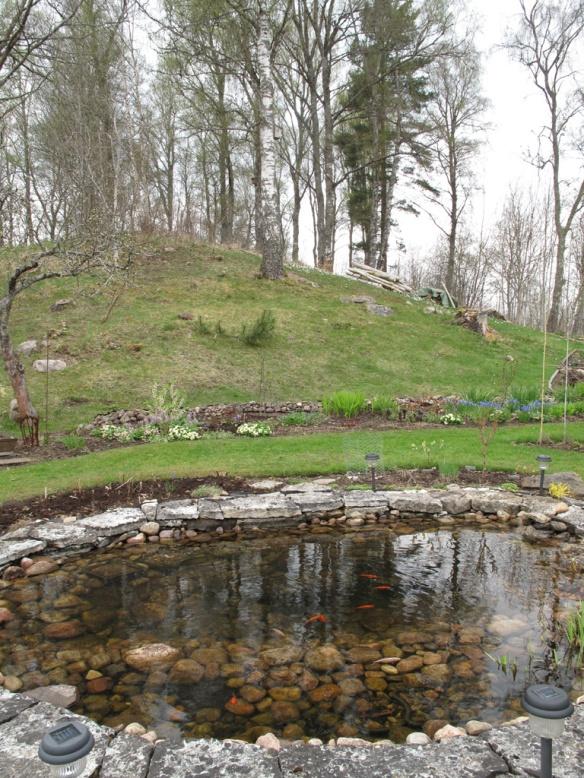trädgård 8