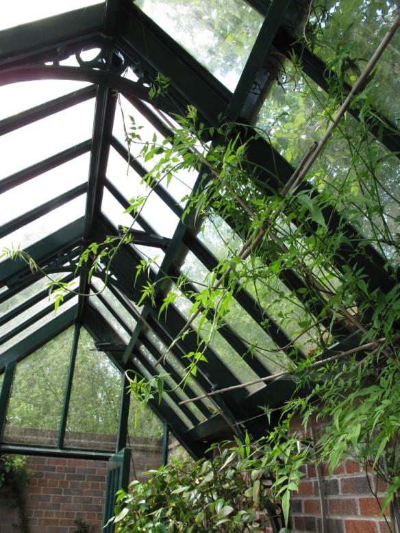 Växthus Ryton Gardens 5