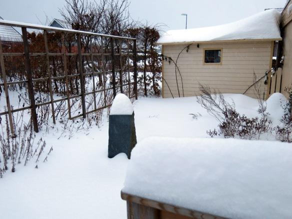 snö 30 jan örtagården