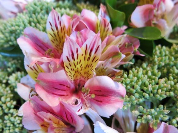 blomsteruppsättning 9