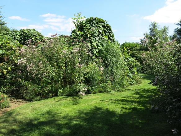 fransk trädgård 25