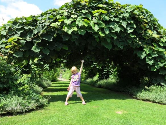 fransk trädgård 7