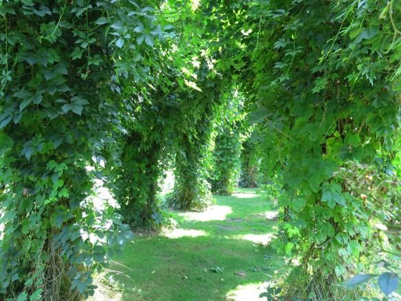 fransk trädgård 8
