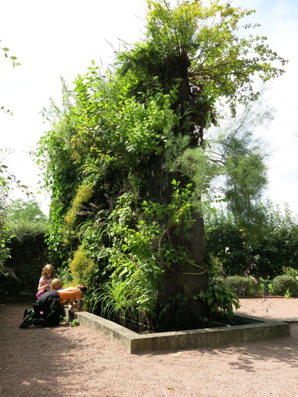 Växtvägg Chaumont 6
