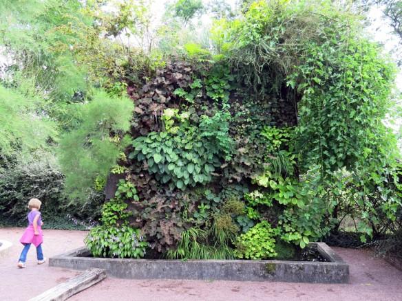 Växtvägg Chaumont 7