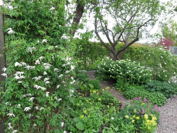 2014 maj. Lunden, sett från komposthörnan