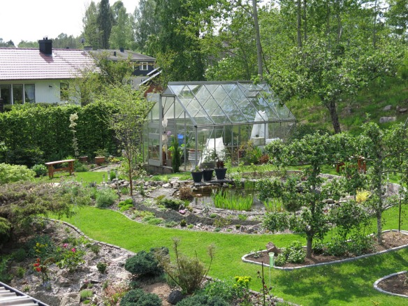 mammas trädgård 1