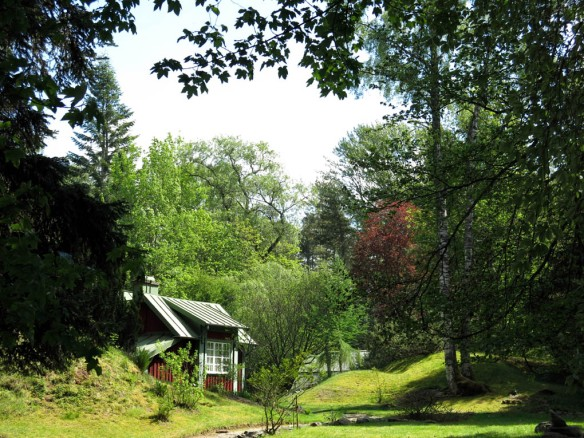Alphems arboretum 6