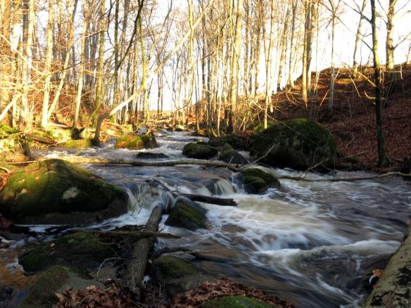 25 dec 14 å vatten rundtur bokskog