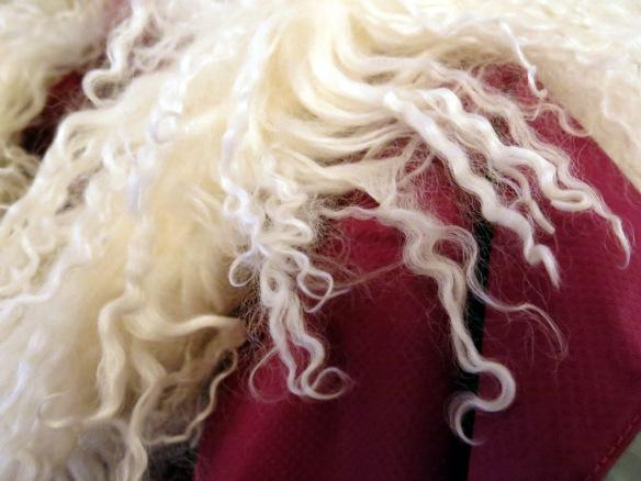 halsduk fårull