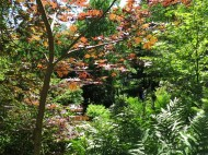 14 juni sta riksmöte 2014 trädgård nr 3 11