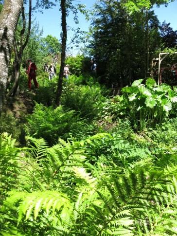 14 juni sta riksmöte 2014 trädgård nr 3 21