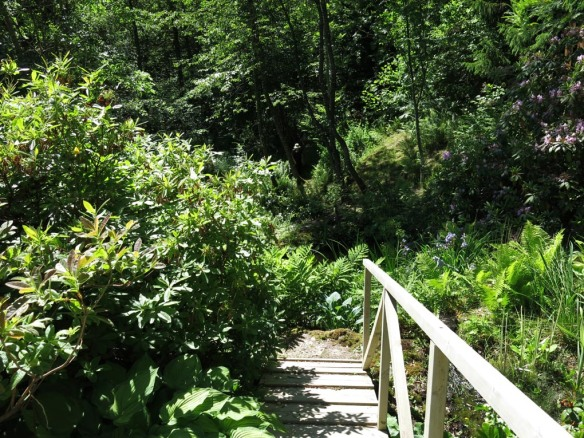 14 juni sta riksmöte 2014 trädgård nr 3 5