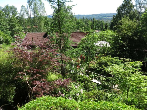 14 juni sta riksmöte 2014 trädgård nr 3 8