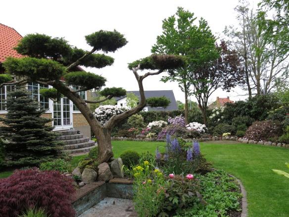 Trädgård 14 maj 1