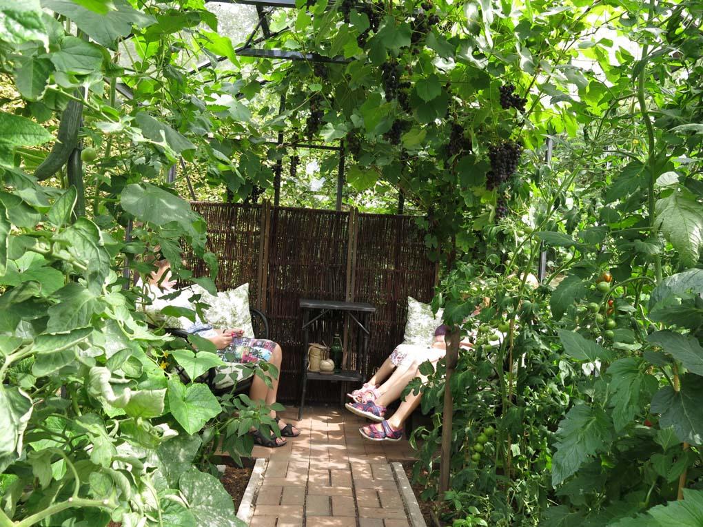 En formklippt del av trädgården med fyra gigantiska buxbomsklot i ...