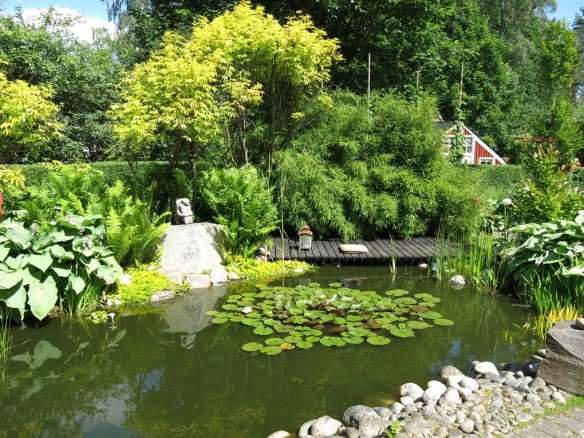 STA riksmöte växjö 2014 stass trädgård 9 bild 11