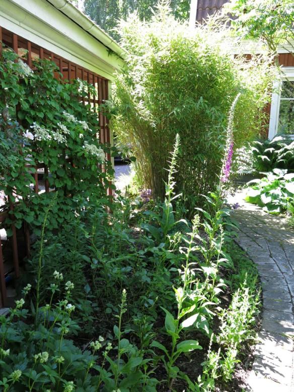STA riksmöte växjö 2014 stass trädgård 9 bild 5