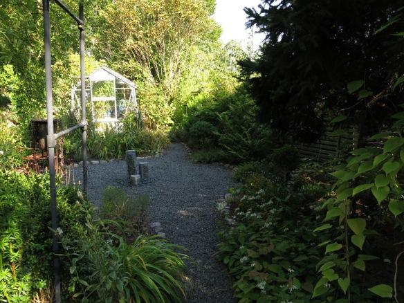 6 sep 14 trädgård IK 29