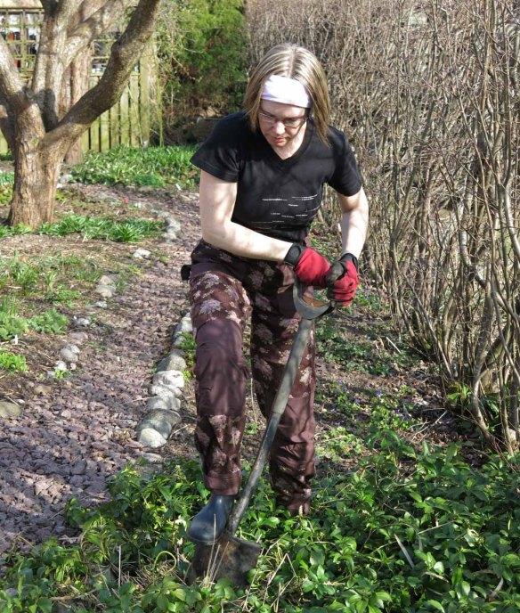 9 april 15 trädhörnet prydnadsgräs gräva