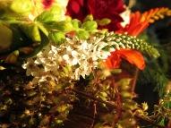 17 aug 15 sensommarbukett blommor bukett 3