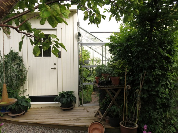 sep 15 växthus trädgårdsbod
