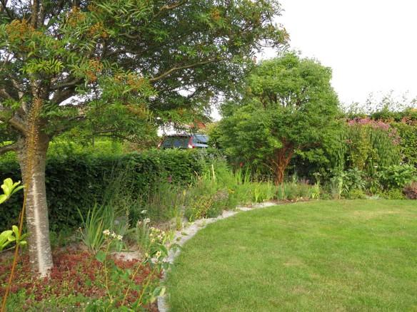 15 aug 15 gräscirkel framsida kopparlönn 7