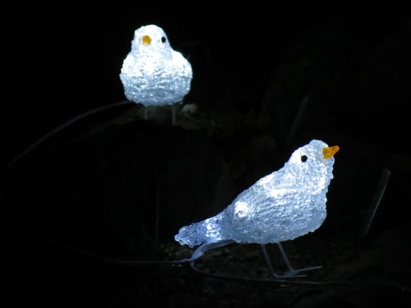 led fåglar 1