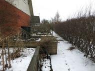 Trädgårdslandet med odlingslådorna