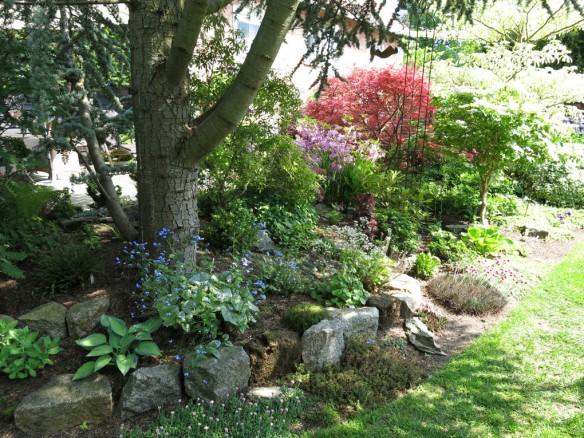 6 juni 15 ta trädgård 10
