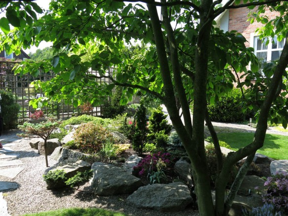 6 juni 15 ta trädgård 2