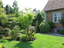 6 juni 15 ta trädgård 3