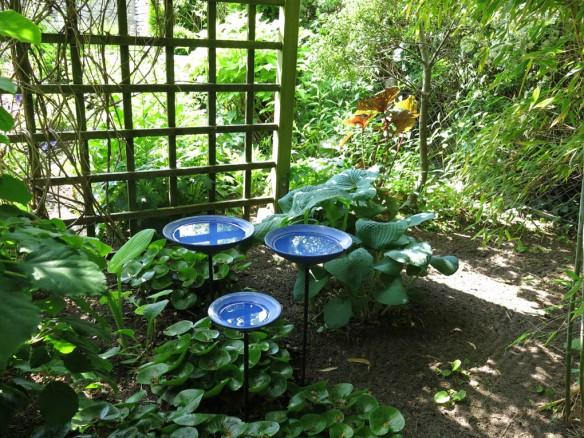 6 juni 15 ta trädgård 9