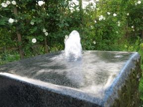 12 juni 16 spaljérabatten vattensten