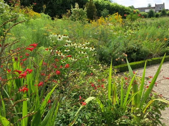 13 aug 13 Villandry fjärilsträdgård
