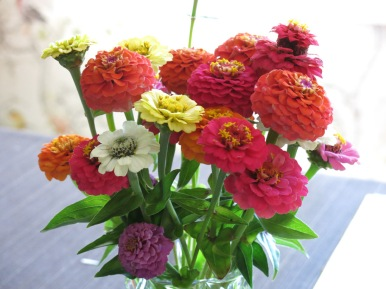 25 aug zinnia bukett