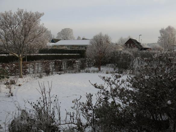vinter-1-framsida-grascirkel-2016