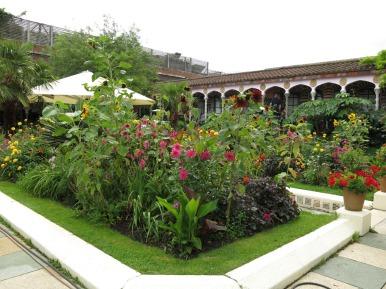 3-aug-15-roof-garden-spanish-16