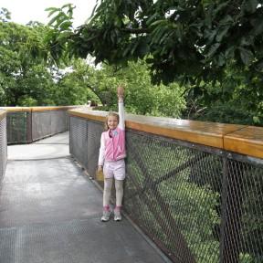 30-juli-15-kew-walkway-2