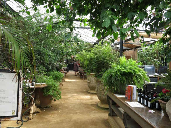6-aug-15-petersham-nurseries-10