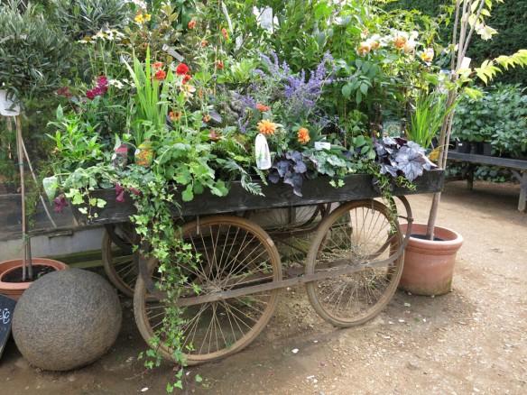 6-aug-15-petersham-nurseries-6