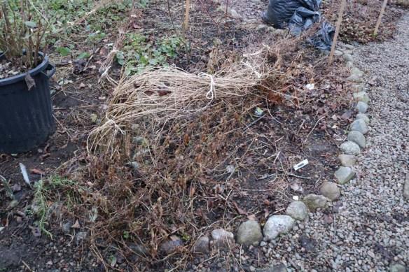 2-mars-17-komposthornan-2