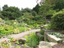 30 juli 15 Kew rock garden 10