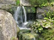 30 juli 15 Kew rock garden 13