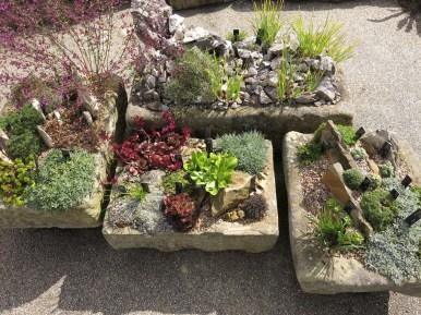 30 juli 15 Kew rock garden 8